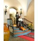 Chenillette  monte escaliers 6500 Fr